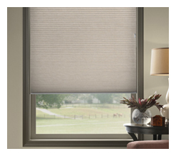 Standard Corded Cellular Shades - Louisville Blinds & Drapery Louisville KY