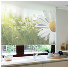 PERSONA Custom Graphics Roller & Solar Shades - Louisville Blinds & Drapery